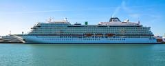 "VIKING SEA (LeHavreShips) Tags: ""cruise ships"" ""paquebots"" bateaux de croisières"" navires ""kreuzfahrtschiff"" ""nave da crociera"" "" barco crucero"" ""navio cruzeiro"" « 游轮 »""クルーズ船"" 유람선 » круизное судно havre port le cruise tourisme cruiseships cruiseshipslehavre croisières flickrcruiseships"