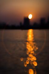 2016096 (gwagwa) Tags: ocean sunset sea sun reflection tokyo evening bokeh voigtlander f22 75mm
