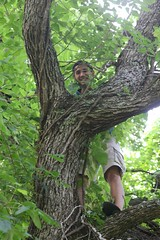 "Javier in the tree • <a style=""font-size:0.8em;"" href=""http://www.flickr.com/photos/27717602@N03/26649060583/"" target=""_blank"">View on Flickr</a>"