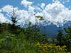 In den bayerischen Alpen (MsAndi63) Tags: bayerischealpen panasoniclumixfz150 alpinegarmischpartenkirchen