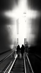 Journey to the light (mykal900) Tags: mailbox blackwhite escalator descent twopeople biancoenero birminghamuk noiretcblanc canon7d 2ndcitylife