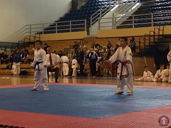 stefanou_15_5_2016_knockdown_251