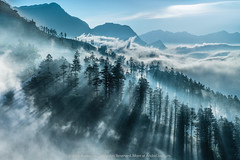 WHITE RAYS SAPA (Andre Luu) Tags: blue trees sky cloud sunlight mountain mountains tree clouds forest sunrise landscape sony bluesky vietnam rays laocai superwideangle mountainlandscape cloudpatterns cloudpattern sonya7r andreluucom