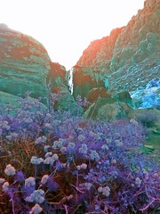 """ Subconcious Vision "" (ColFineArtistMar1) Tags: red panorama plants mountain art nature colors rock outdoors spring lasvegas nevada manipulation canyon vision photograph"