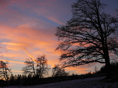 Nice sky at sunset (classcamelia) Tags: world100f outstandingromanianphotographers marculescueugendreamsoflightportal