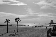 beach life in Barcelona (Gabi Wi) Tags: strand barcelona spain bw beach meer reflexionen freizeit strandleben licht kste ufer landschaft europe hotelw segel palmen cyclist spielplatz boote