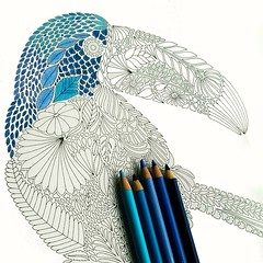 Blue Parrot (AndIsOnFire) Tags: blue color bird pencil colorful parrot draw crayons crayon shadesofblue