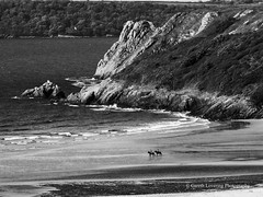 Three Cliffs Bay 2016 05 24 #41 (Gareth Lovering Photography 2,000,000 views.) Tags: sea castle beach swansea wales landscape bay sand olympus cliffs gower crawley em1 threecliffs pennard pennardcastle 14150mm garethloveringphotography