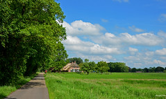 Landscape Forest (JaapCom) Tags: trees holland tree netherlands dutch clouds farmhouse landscape nederland landschaft paysbas landed veluwe wezep farmhause vollenhof jaapcom
