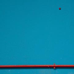 delfinario (zecaruso) Tags: valencia minimal explore cac tubo ze delfinario zeca ciudaddelasartesydelasciencias oceanogràfic cityofartsandsciences nikond300 zecaruso cicciocaruso zequadro ze²