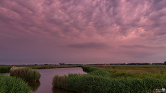 Clouds colored by the setting sun (BraCom (Bram)) Tags: trees cloud holland reflection reed netherlands clouds canon puddle evening bomen ditch farm widescreen nederland wolken nl avond polder 169 riet plas sloot boerderij wolk zuidholland goereeoverflakkee aftersunset spiegeling southholland dirksland canonef24105mm nazonsondergang bracom canoneos5dmkiii bramvanbroekhoven manezee