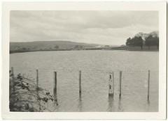 Flooded paddocks (1929) (Tasmanian Archive and Heritage Office Commons) Tags: flooding launceston 1929 naturaldisaster tasmanianhistory