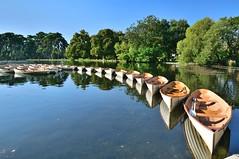 Paris: Bois de Boulogne / Alignment of boats (Pantchoa) Tags: paris boisdeboulogne parc lac bassin nature barques arbres loisirs natique eau lacinfrieur nikon d90 nikkor 1685mmf3556edvr paysage reflets alignement