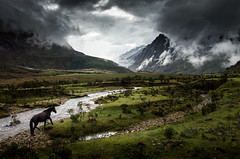 Into the Andes (Pichaya V. (Zolashine)) Tags: horse santacruz peru southamerica nature river cloudy andes raining theandes santacruztrek zolashine pichayaviwatrujirapong andeadhorse