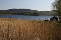 Loch Ard, Trossachs (Paul Emma) Tags: uk mountain lake scotland loch benlomond trossachs aberfoyle lochard