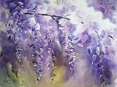 Wisteria (katekos) Tags: flowers art floral watercolor painting purple watercolour watercolours wisteria kwiaty obraz floralwatercolor katekos