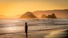 Random Guy photobombs shot at Seal Rocks (Alan _T_) Tags: ocean sunset cliff house san francisco rocks seal photobomb