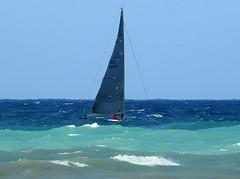 16061701828foce (coundown) Tags: genova mare vento velieri sailingboat ussmasonddg87 ddg87 ussmason mareggiata piloti