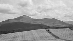 Skiddaw (Charlie Little) Tags: bw landscape cumbria skiddaw uldale sony