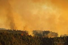 Trailhead Fire (trifeman) Tags: california summer june canon fire eldorado 7d foresthill placer americanriver trailhead 2016 usfs wildlandfire eldoradonationalforest enf calfire canon7dmarkii volcanoville trailheadfire