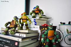 Fotografa de Familia (spawn5555) Tags: macro toy nikon turtle ninja cotidiano libro libros juguete tortugas pequeos d3000