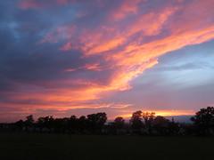 Dramatic sky over Ruskin Park (John Steedman) Tags: uk greatbritain england london unitedkingdom camberwell se5 grossbritannien   ruskinpark   grandebretagne