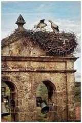 Ermita de la Virgen del Campo (Historia de Covaleda) Tags: duero urbion covaleda
