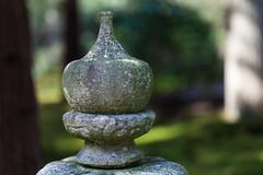 clingendael-7788 (Arie van Tilborg) Tags: japanesegarden hague thehague clingendael japansetuin clingendaelestate landgoedclingendael arievantilborg