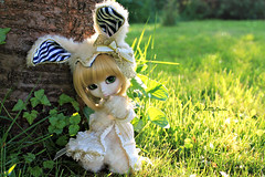 My tiny Rabbit ~ (Little.Darki) Tags: green goldenrod wig bjd pullip 16 nella dolo animaleyes leeke obitsu 25cm rewigged rechipped obitsued pullipnella