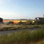 Bollenvelden met molen thumbnail