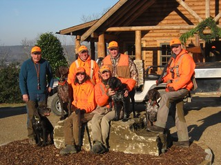 Alabama Luxury Quail Hunt - Guntersville 18