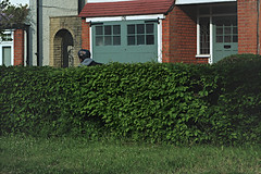 Hedge and cyclist, WImbledon (sixthland) Tags: cyclist dailycommute hedge flare wimbledon x10