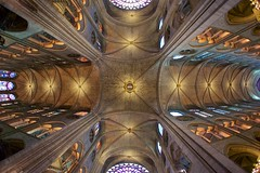 Notre Dame Transept (Brian Utesch (shutterBRI)) Tags: travel paris france church architecture europe european cathedral sony medieval ceiling notredame rosewindow nex transept shutterbri 2013 brianutesch nex7