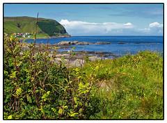 West Coast Summer (Krogen) Tags: nature norway landscape norge natur norwegen olympus noruega scandinavia camedia krogen landskap noorwegen noreg skandinavia runde c50