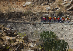 Eritrean National Cycling Team On Massawa- Asmara Road, Asmara, Eritrea (Eric Lafforgue) Tags: africa road motion color colour tree men bike bicycle sport horizontal outdoors photography togetherness day adult hill groupofpeople adultsonly asmara eritrea hornofafrica eastafrica realpeople capitalcities eritreo onlymen colorpicture erytrea asmera eritreia colourimage italiancolony  ertra    eritre eritreja eritria unrecognizableperson colourpicture  rythre africaorientaleitaliana     eritre eritrja  eritreya  erythraa erytreja     italiancolonialempire maekelregion ert6467