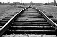 Railroad to Hell (Luiz C. Salama) Tags: history death holocaust shoa nazi wwii poland worldwarii morte remembrance auschwitz historia polonia birkenau shoah holocausto relembrar auschwitzii nazismo auschwitz2