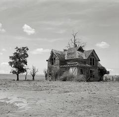 Abandoned Farmhouse, Washington (austin granger) Tags: abandoned film field farmhouse square washington time decay crop memory impermanence dust gf670 austingranger