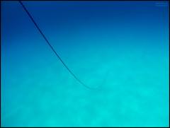 Profundidades (Juancdieguez | Photography - Madrid (ES) -) Tags: espaa color azul mar europa formentera deportes buceo submarinismo azules marmediterrneo calasaona islasbaleares subacutico deportesdeagua