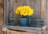 Flower Pot (beachwalker2008) Tags: railroad museum bishop laws