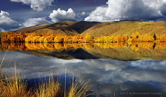 Twizel (PhotoArt Images) Tags: autumn lake fall clouds reflections canterbury foliage twizel nzsouthisland topshots lakeruataniwha photosandcalendar worldwidelandscapes autumninnz nikon2470mm28 panoramafotogrfico theoriginalgoldseal flickrsportal photoartimages enteredinsybcontest