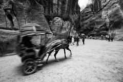 Siq (JoeyRamone) Tags: bw horse petra siq jordan 1020mm vacations 2011 wadimusa