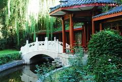 Hotel Shangri-La Grounds (Let Ideas Compete) Tags: park garden hotel beijing shangrila grounds