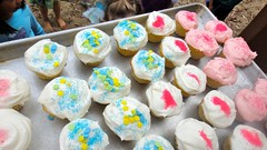 Birthday Cupcakes with White Frosting, Blue & Red Sprinkles (Lynn Friedman) Tags: birthday blue cake childhood cupcake dessert frosting girl happy homemade house lynnfriedman molly party pink playground playout red sanfrancisco slide sprinkles swing tire tree white celebration sweets design decoration event card