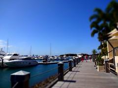 Marina Mirage (haphopper) Tags: street blue summer people tree river hotel ship path australia qld goldcoast  ool marinamirage 2013