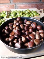 Châtaignes (Lina Pyara) Tags: bon paris france nature seine fruit automne de à ile sur marron coque vitry chataignes