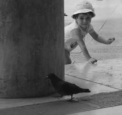 Curiosit (Alice Protto) Tags: venice people italy art smile birds canon eos reflex photographer child photos sanmarco happyness piccioni eos550d