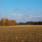 Schwalingen - Der