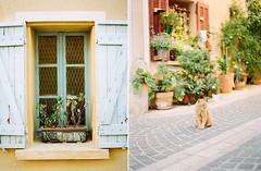 South France (swimrecord) Tags: street light sunlight france flower film window place kodak contax 400 portra planar 80mm contax645 filmisnotdead