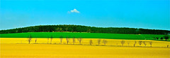 Czech countryside and the lonely cloud (Rnoltenius) Tags: blue sky cloud green beautiful golden countryside amazing czech sunny fields layers lonely contrasts yeloow mygearandme mygearandmepremium mygearandmebronze mygearandmesilver mygearandmegold mygearandmeplatinum flickrsfinestimages1 infinitexposure