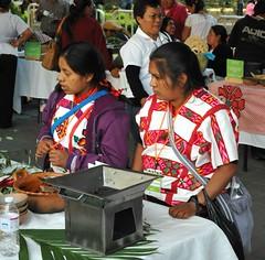 Mexico Oaxaca Mixtec Women (Teyacapan) Tags: mexico women gente fiestas mexican oaxaca mujeres mixteca nuyoo huipils